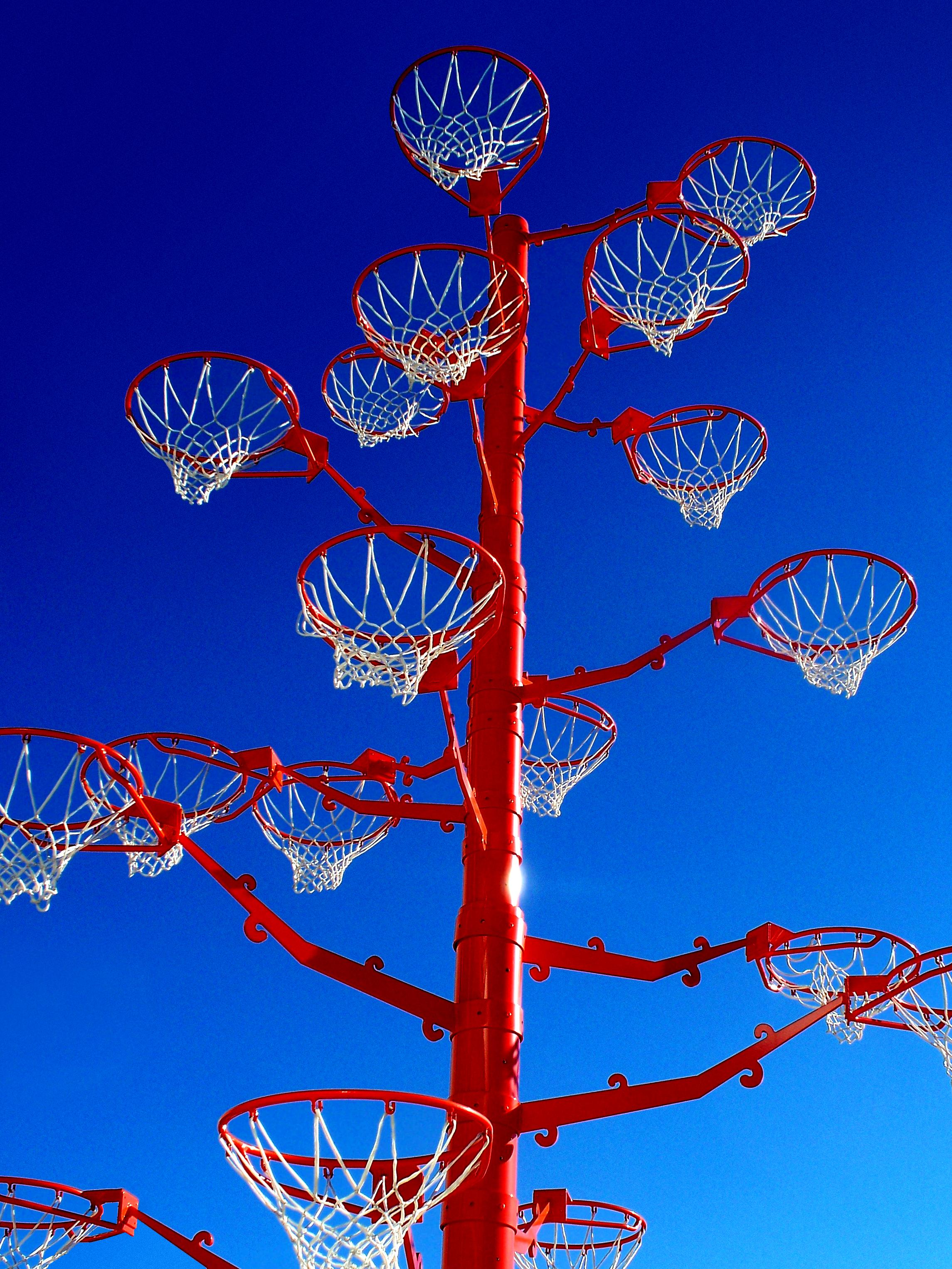 Basketball Tree 1